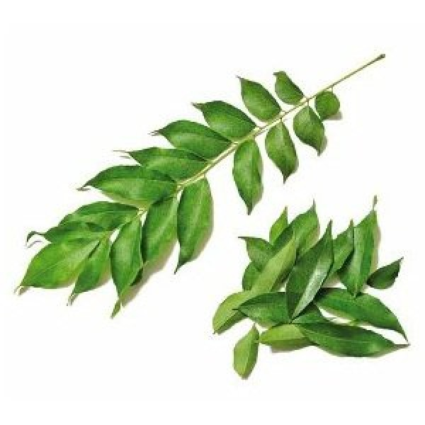 CURRY LEAF HAIR OIL